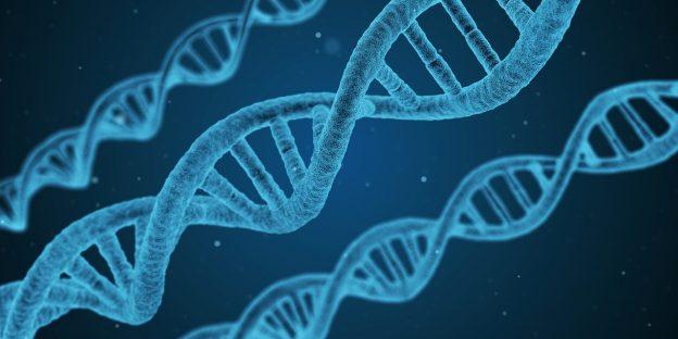 Genetische Tests